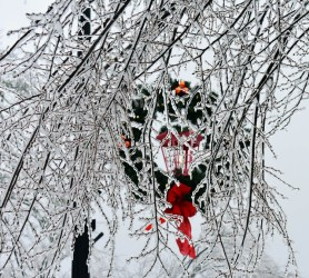 Snow.Highlands.12.9 (36)