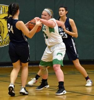 Blue.Ridge.Asheville.basketball.V.girls (12)