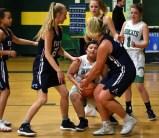 Blue.Ridge.Asheville.basketball.V.girls (19)