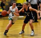 Blue.Ridge.Asheville.basketball.V.girls (22)