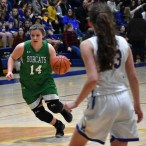 Highlands.Blue.Ridge.basketball.girls.V.snr.night (1)