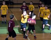 Rec.park.basketball.2 (17)