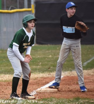 Blue.Ridge.Smoky.Mountain.baseball.ms (14)