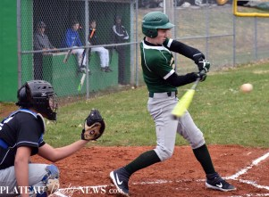 Blue.Ridge.Smoky.Mountain.baseball.ms (15)