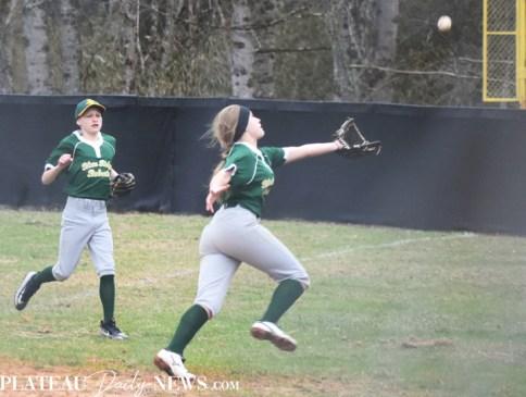Blue.Ridge.Smoky.Mountain.baseball.ms (22)