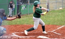 Blue.Ridge.Smoky.Mountain.baseball.ms (26)