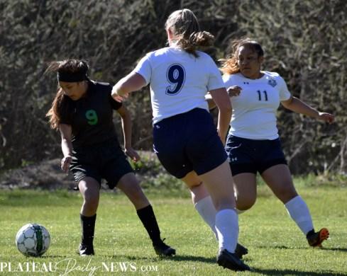 Blue.Ridge.TriCounty.Soccer.V (36)