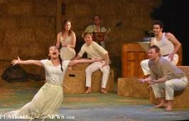 Playhouse (22)