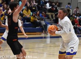 Highlands.Basketball.Rosman (13)