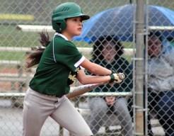 Blue.Ridge.Baseball.Plateau (6)