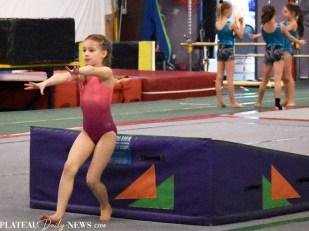 Gymnastics (20)