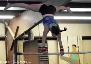 Gymnastics (34)