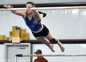 Gymnastics (46)