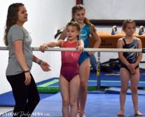 Gymnastics (47)