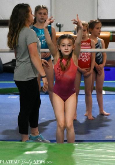 Gymnastics (50)