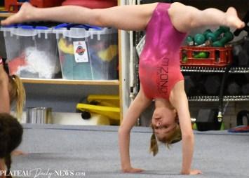 Gymnastics (56)