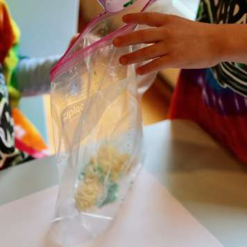 Children shaking parmesan cheese and paint in a bag