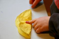 Child folding yellow circle over cotton ball
