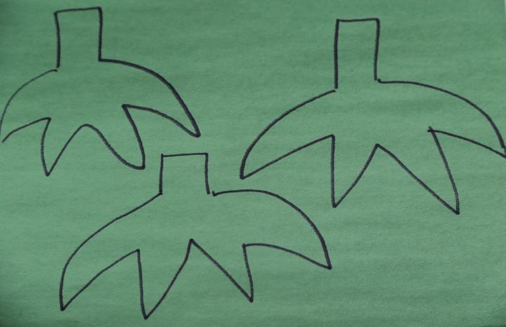 Three tracings of tomato stems on green paper