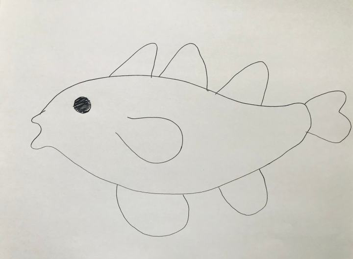 outline of cod on paper