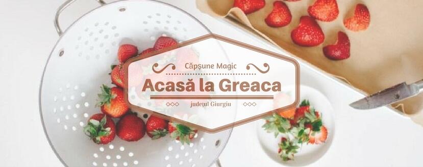 Acasă la Greaca au căpșune magice