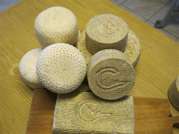 Brânză de la Asociatia Curtea Culorilor din judetul Timis (4)