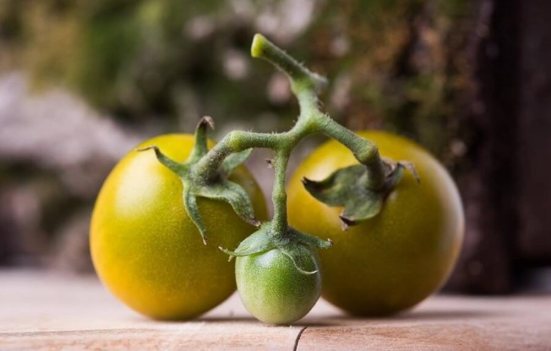 Buniol Green Grape
