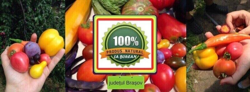La Borcan județul Brașov, legume ecologice locale