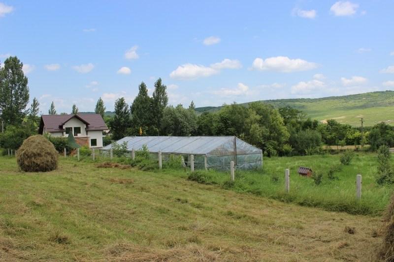 poeferma-ferma-din-localitatea-bucecea-judetul-botosani-22
