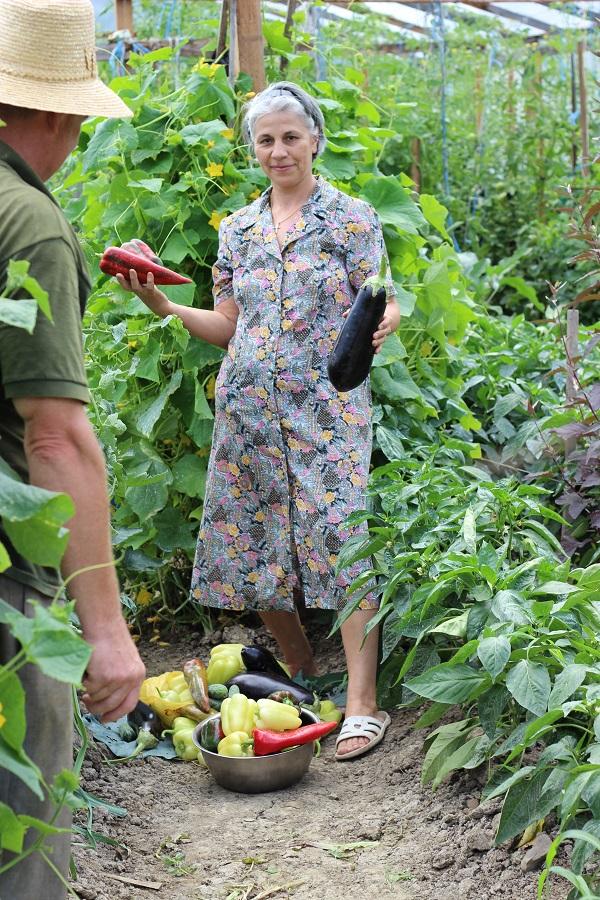poeferma-ferma-din-localitatea-bucecea-judetul-botosani-30