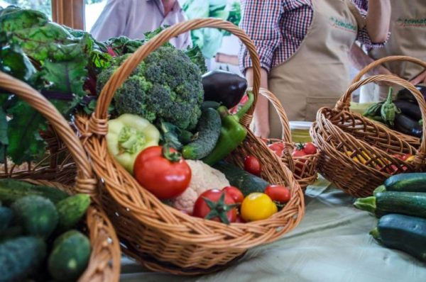 Tomatina, cooperativa agricola din judetul Ilfov gradina cu aplicatie livrare mancare, comanda mancare Bucuresti sau livrare mancare Bucuresti (9)