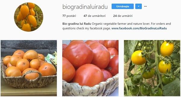 bio gradina lui Radu instagram