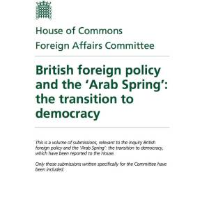 """Submission on Libya to the Foreign Affairs Committee enquiry: """"British foreign policy and the 'Arab Spring': the transition to democracy"""""""