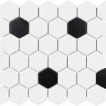"White & Black Matte Hexagon 2"""