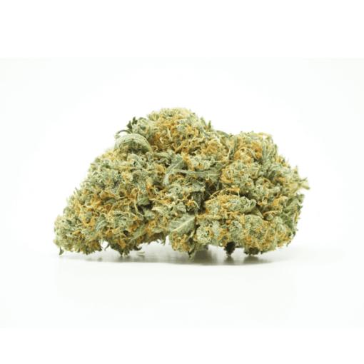 Citrus Haze (Sativa) Buy Online Canada