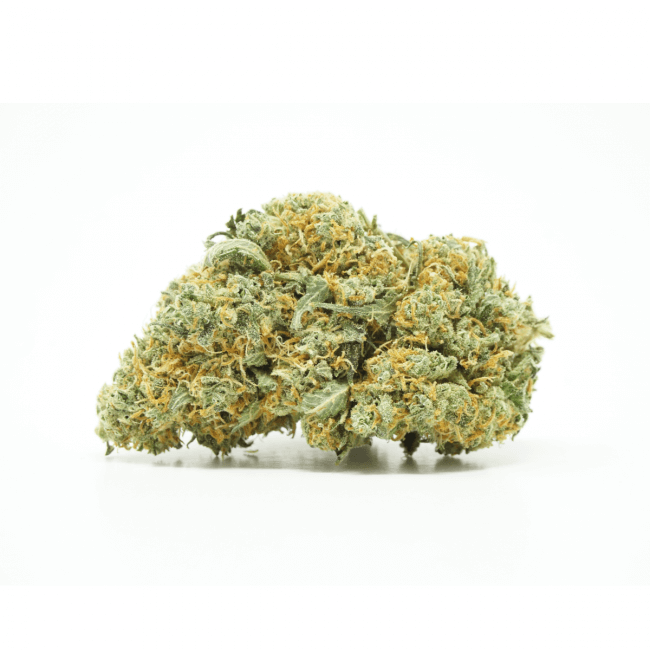 Citrus Haze (Sativa) Buy Online Canada