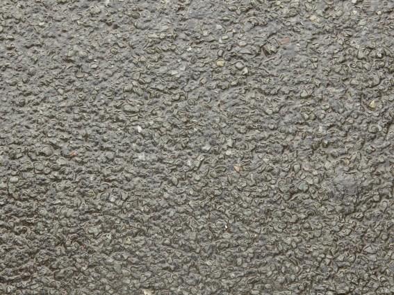 wet-gravel-path