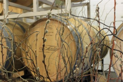 Tasting/Barrel room at Talty Vineyards