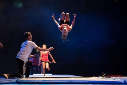 Gymnaster slår volter på Eurogym 2014
