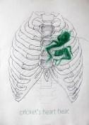 'El latido del corazón del grillo', por le frère.
