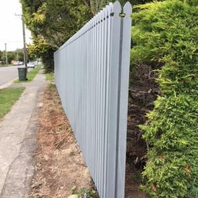 6) New (Gothic style) Fence Build