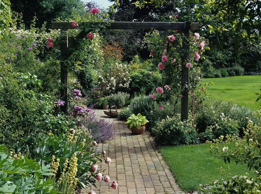 Oak Pergolas And Arches Platts Horticulture