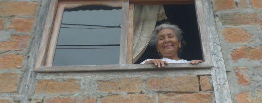 P1590444 RITA gatitos mother