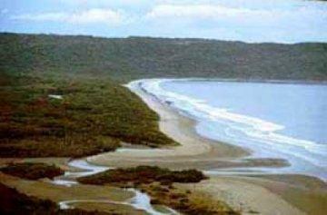 Playa Naranjo (Santa Rosa)