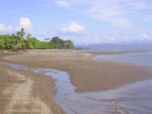 Playa Blanca (Jiménez)