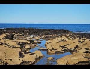 fotos playas doradas 20