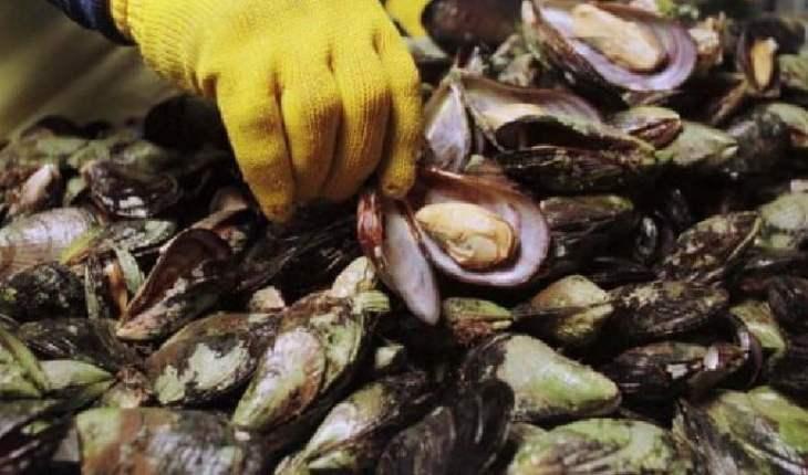 Veda total para la captura de moluscos bivalvos en zona de Punta Colorada
