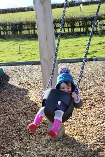 Tenby-Dinosaur-Park-Swings