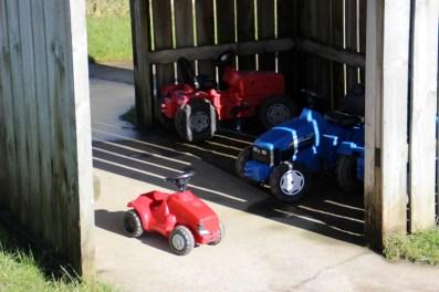 Tenby-Dinosaur-Park-Tractors