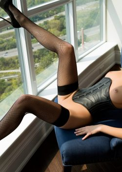 Shannon Cole stockings